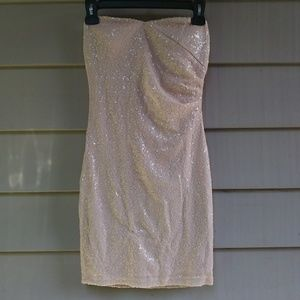 Blush Pink Sparkly Sequin Strapless Dress